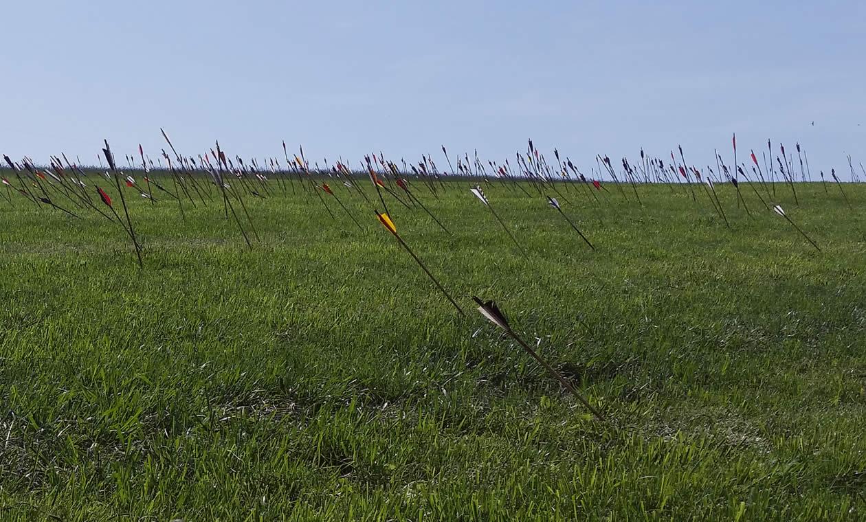 Pfeile soweit das Auge reicht. Der Pfeilhagel in Hauzenberg gehört zu den größten Veranstaltungen dieser Art.