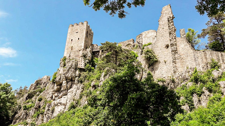 Burg Weißenstein in Regen 2019